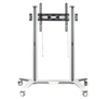 BT8564 - Designer trolley - Rear