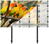 BT93INFWP-M-5X5 - Mobile Stand with Black Columns